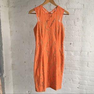 Orange Designer Yigal Azrouel lace cocktail dress